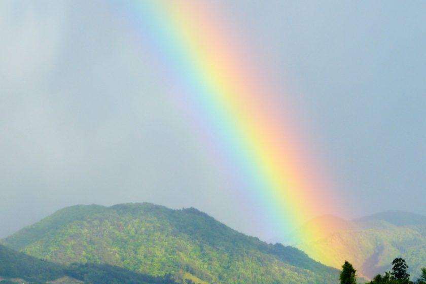 7月16日は『虹の日』。虹を探したその先にあったものとは…!?