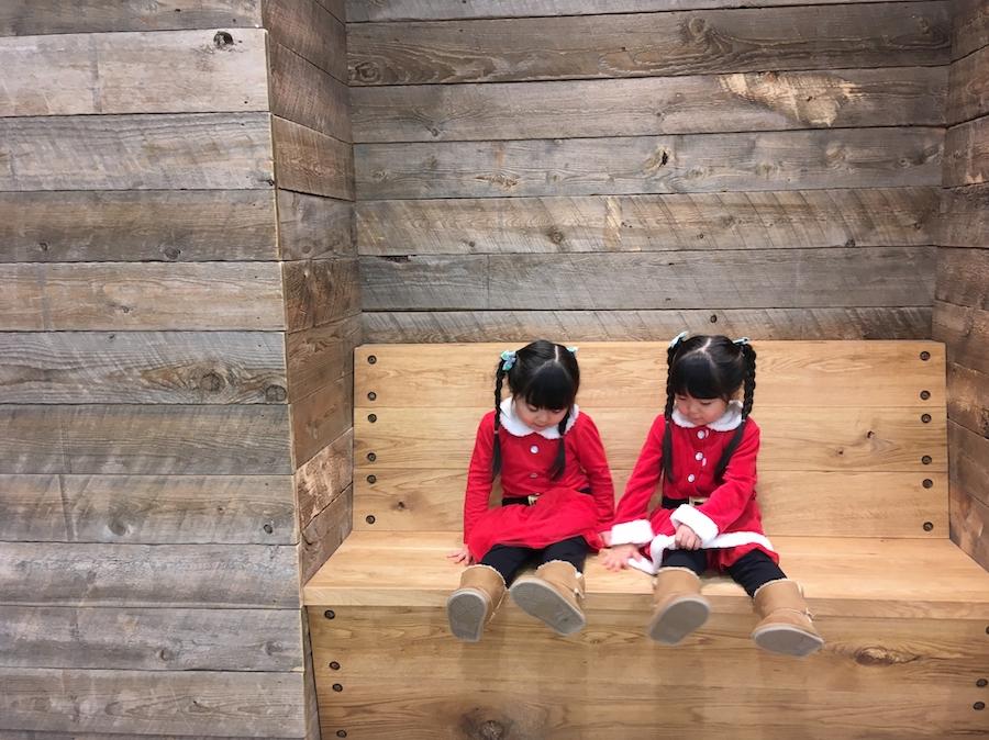 双子の日はふたつある?
