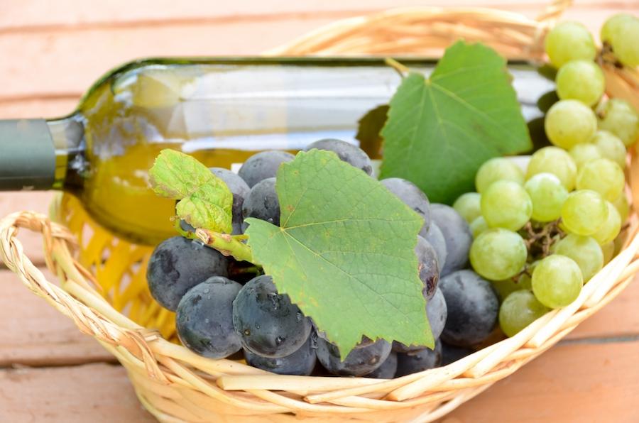 ブドウの種類