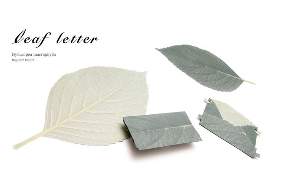 leafletter