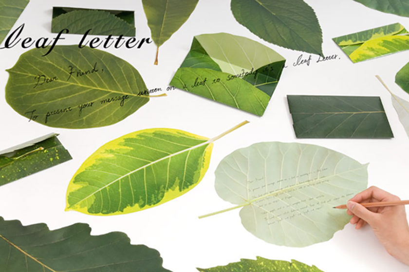 """これこそが本当の""""葉書""""?葉っぱに包んだ言葉を届ける「Leaf letter」"""