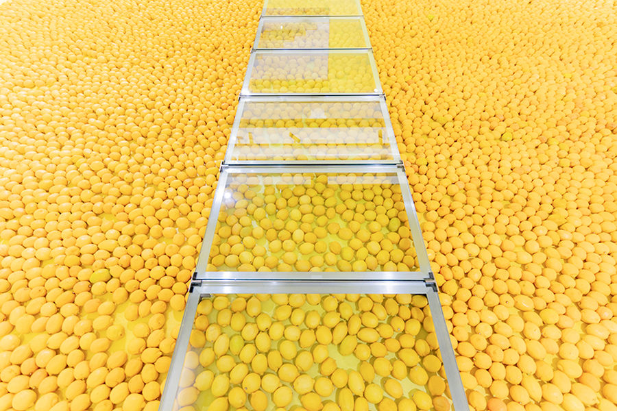 日常のすぐそばにある小宇宙 ー「廣瀬智央 地球はレモンのように青い」展@アーツ前橋