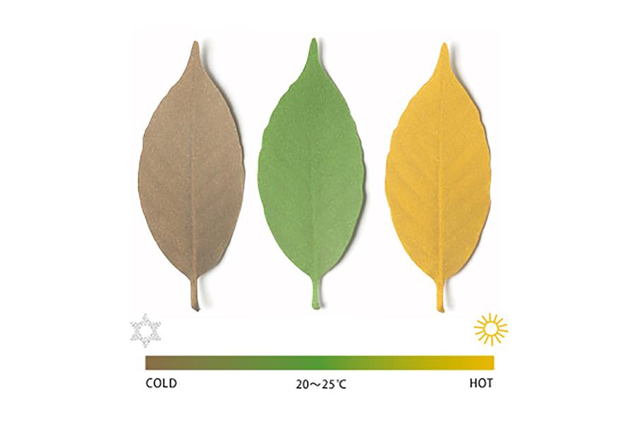 リーフ Thermo meter