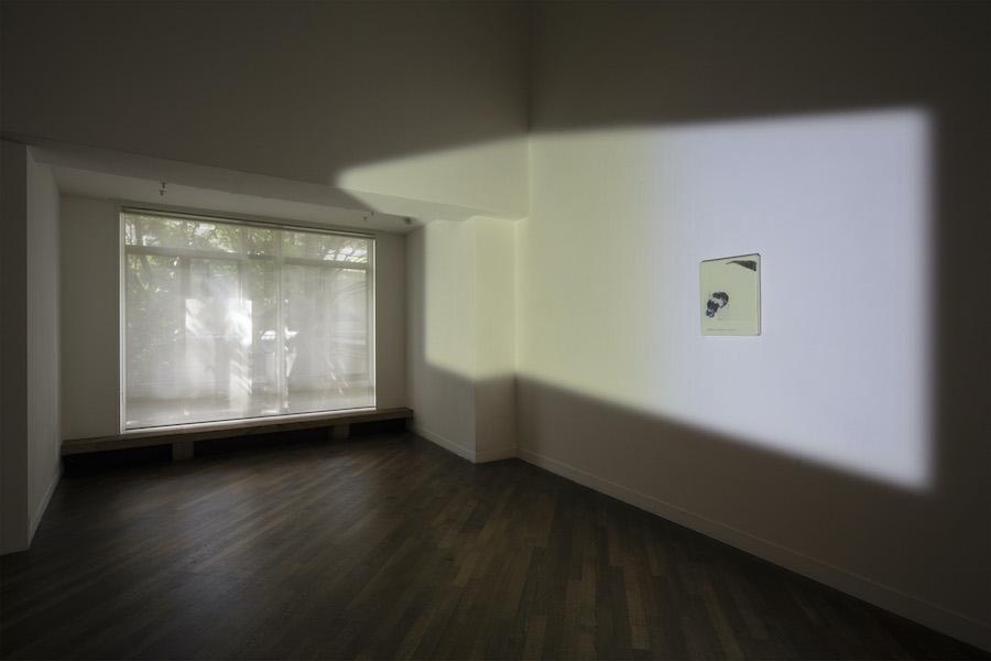 光ー呼吸 時をすくう5人 展示風景画像 (《Flowers》/ リー・キット) 撮影:城戸保