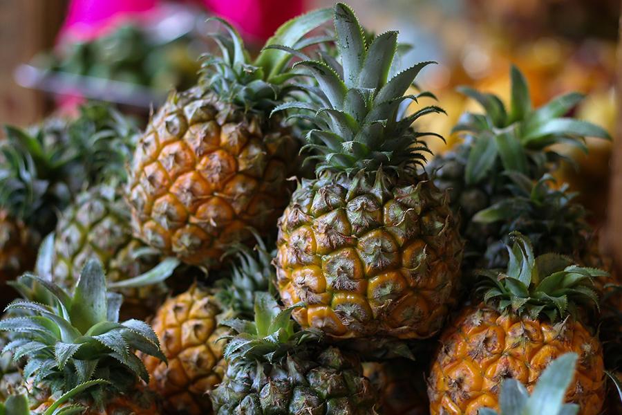 パイナップルの生産が盛んな台湾(画像出典:©︎Anastasia Gepp by Pixabay)
