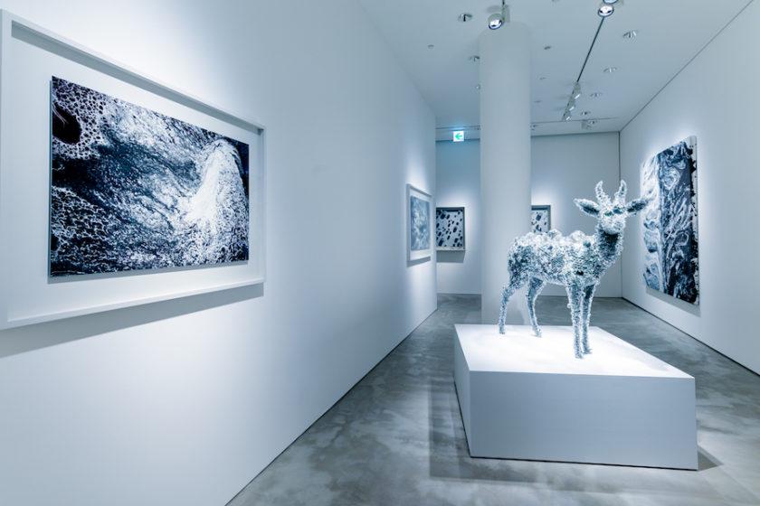 代表作から実験的作品まで。 彫刻の定義を柔軟に解釈する 彫刻家・名和晃平さん新作個展 「Oracle」(GYRE GALLERY)