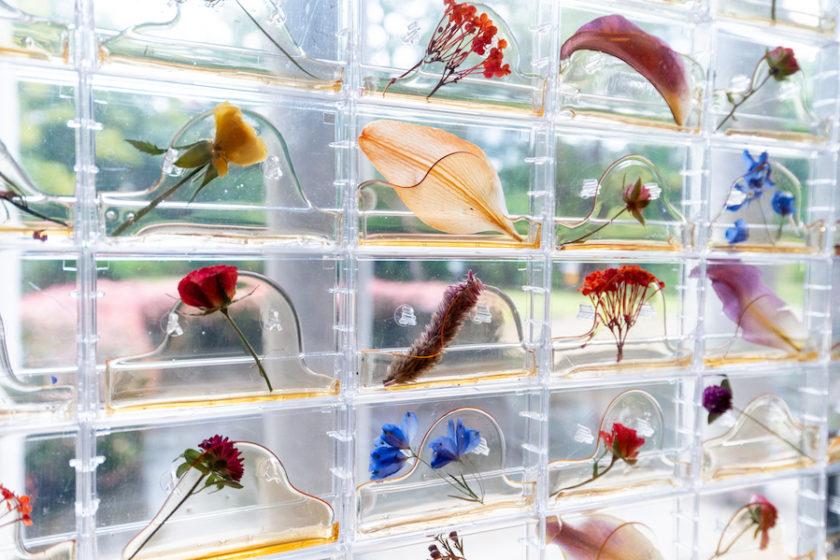"""アール・デコ建築の空間と共鳴する""""現代アート""""の展覧会  「生命の庭ー8人の現代作家が見つけた小宇宙」展(東京都庭園美術館)"""
