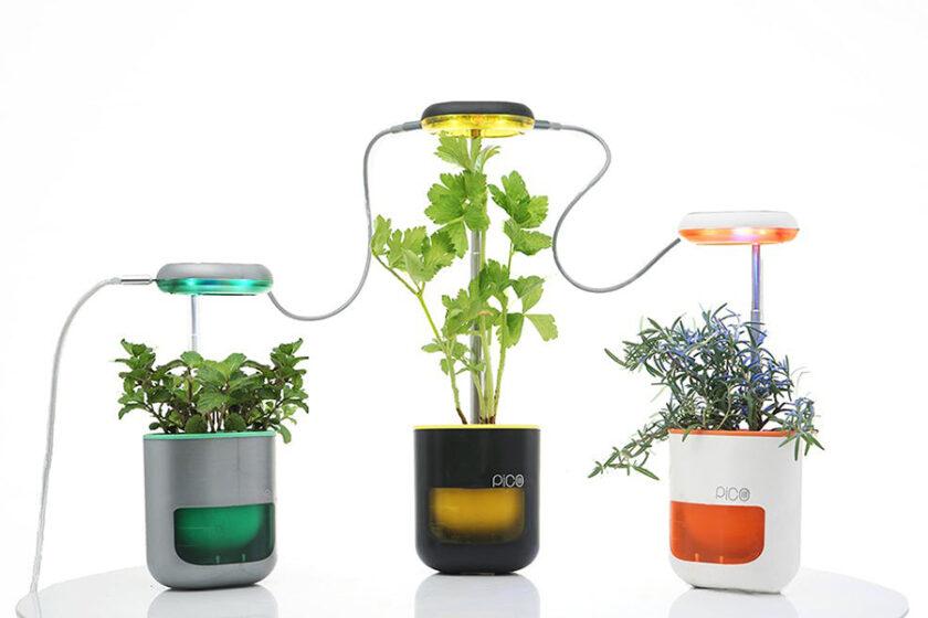 毎回植物を枯らしちゃう人も、もう失敗しない!どこでも気軽に手のひらサイズの家庭菜園「PICO」