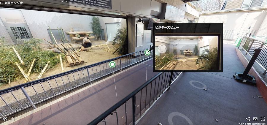 バーチャルツアーの様子(恩賜上野動物園 東園パンダ舎)写真提供:東京動物園協会