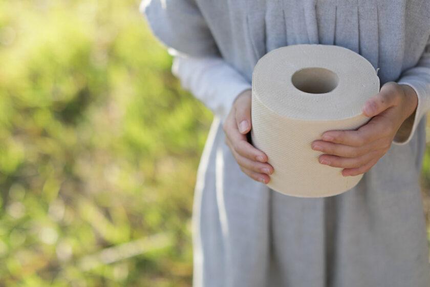 吸って、収穫して使い、そしてまた育つ──いつも使うものからひとりひとりが生み出す循環へ。竹から生まれたトイレットペーパー「BambooRoll(バンブーロール)」