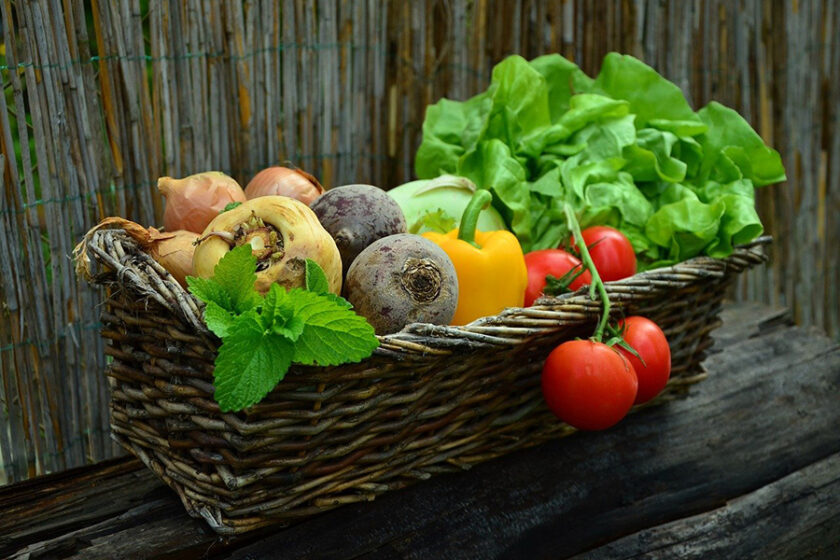 このまま消費するだけでいいの?青山ファーマーズマーケットが取り組む循環型農業CSAって何?