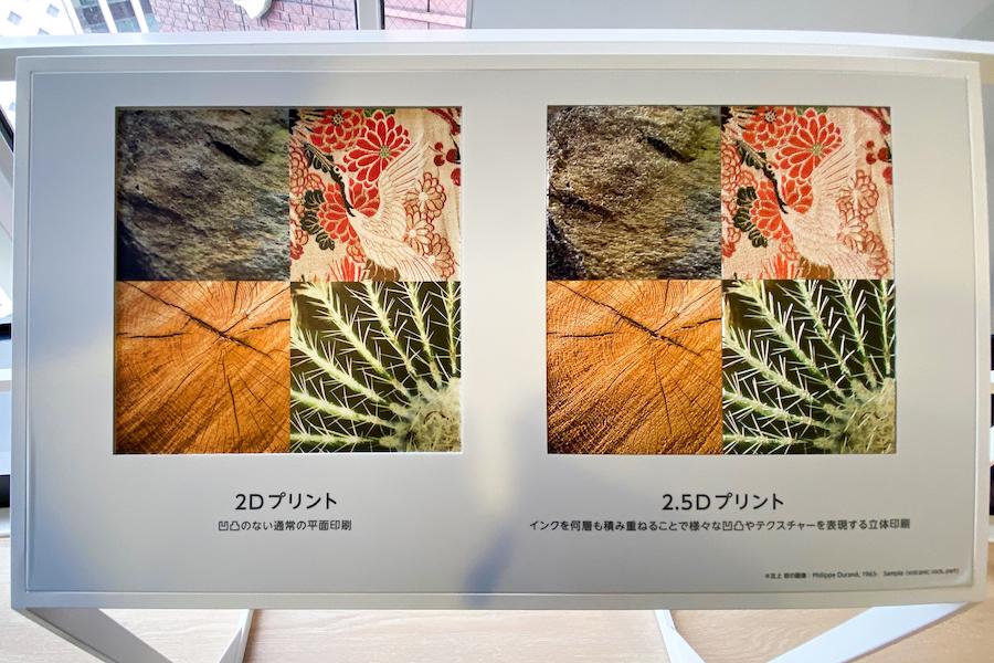 StareReap解説パネル 右が2.5Dプリントによる印刷 photo by ぷらいまり