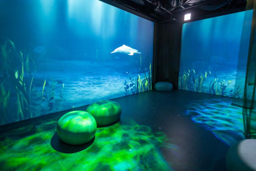 まるで水族館の巨大水槽のような「アンダーウォーターゾーン」 photo by ぷらいまり