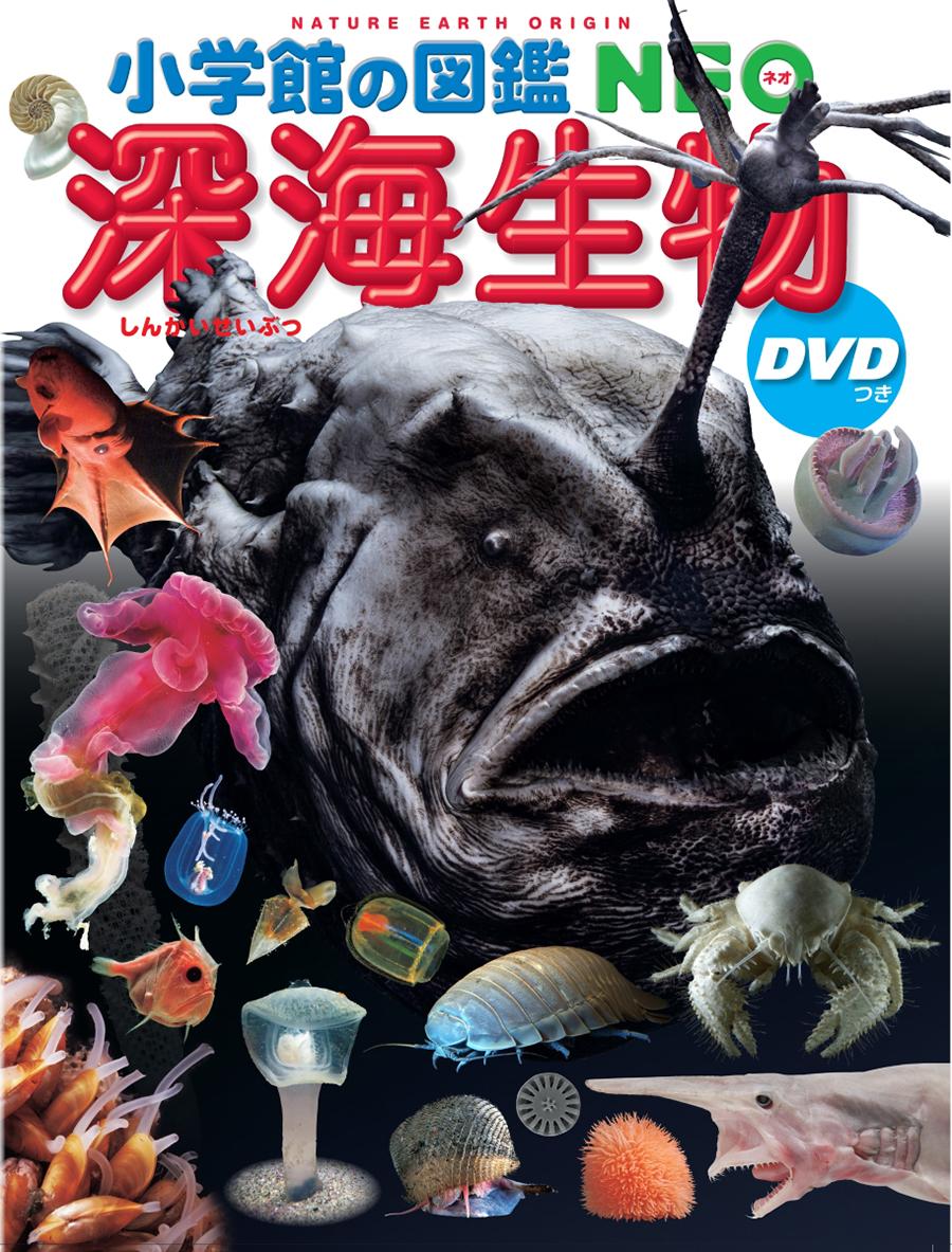 小学館の図鑑NEO「深海生物」