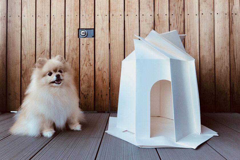 日本の文化「折り紙」で表現する癒しのスタイル 人もペットも幸せになる、スタイリッシュなくつろぎスペース「折り紙ペットハウス」